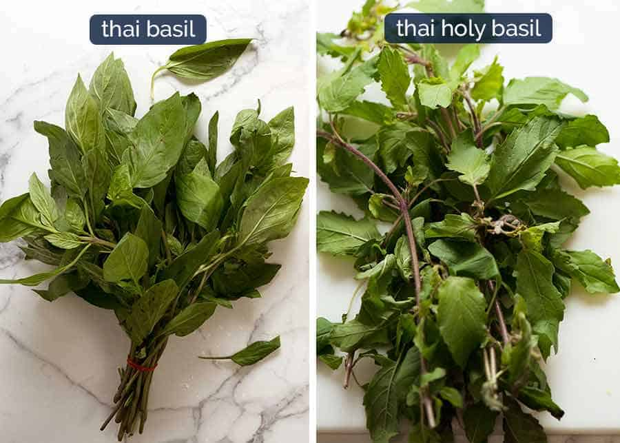 Difference between Thai Basil and Thai Holy Basil - Thai Basil tastes like normal basil with a slight aniseed flavour. Holy basil has jagged edges and it does not have an aniseed flavour, it tastes more like Italian basil.