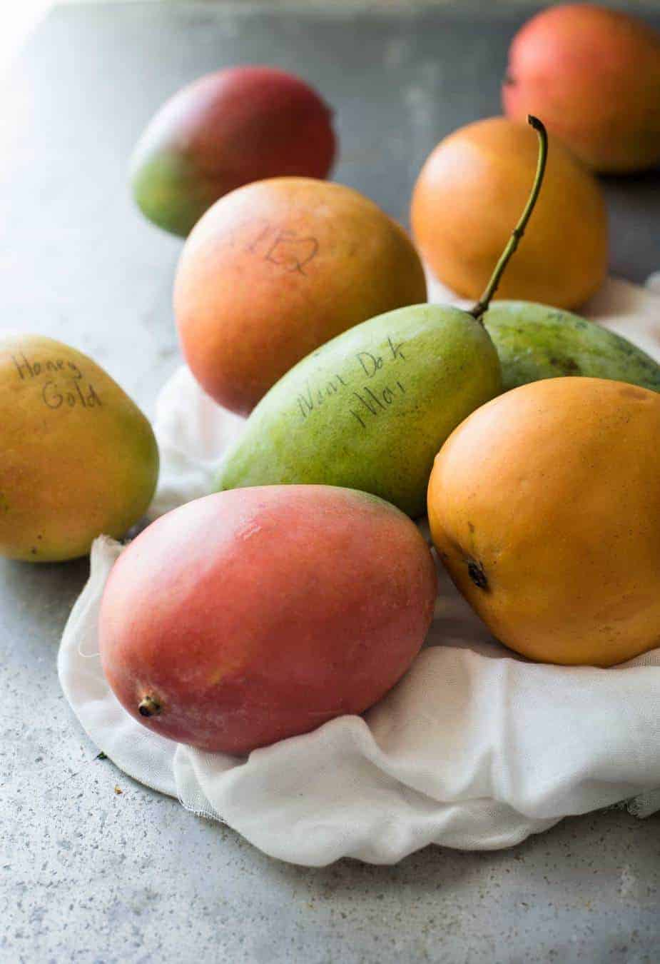 Different mango varieties grown at Groves Grown Tropical Fruits farm