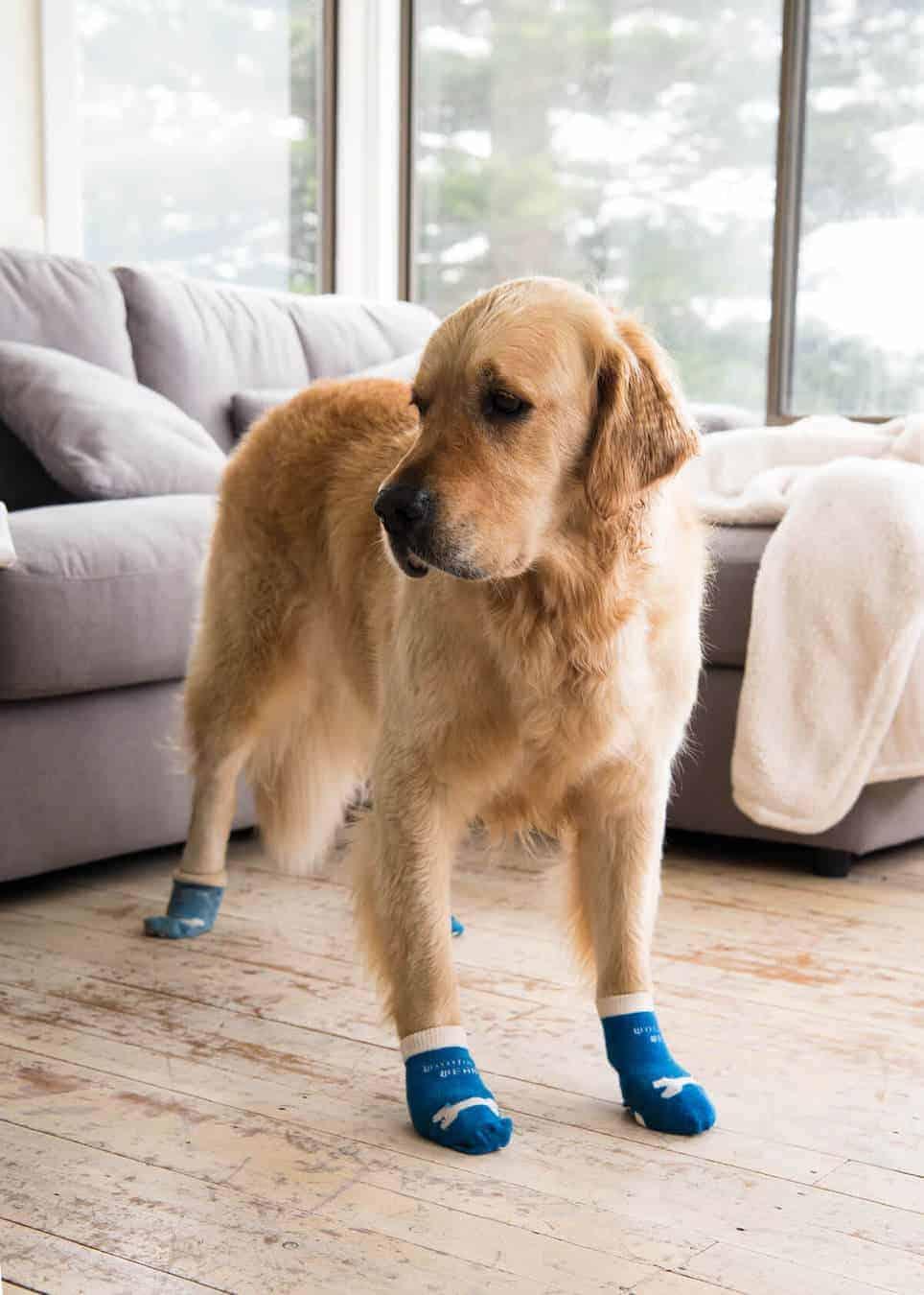 dozer-socks