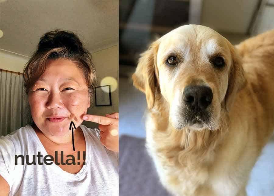 Dozer the golden retriever dog Nagi Nutella smear on face