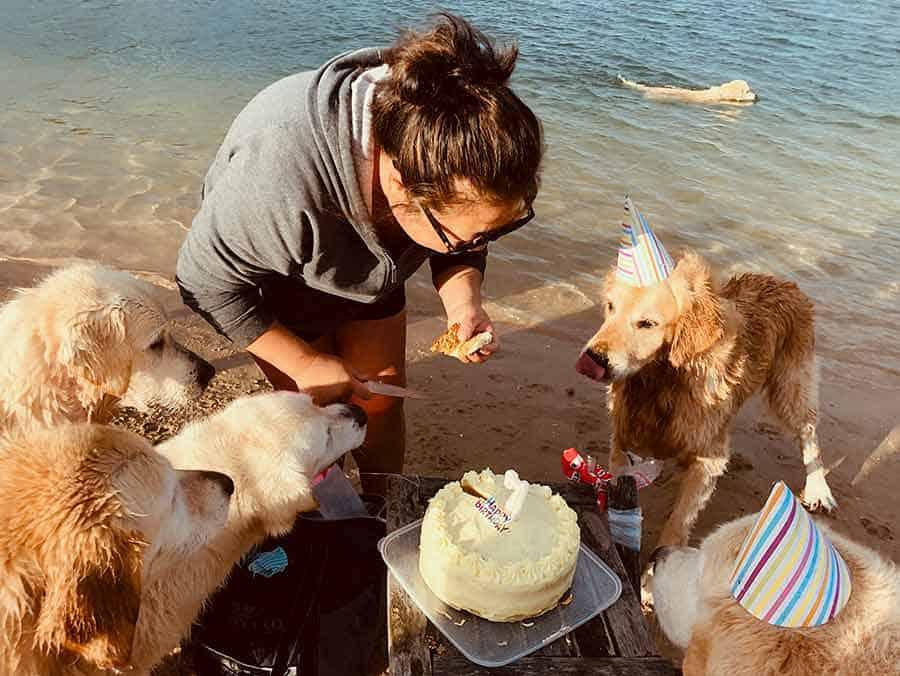 Dozer birthday party-Bayview-April 2019
