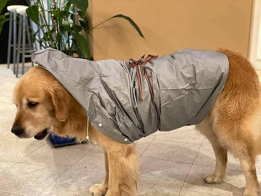 Dozer makeshift raincoat